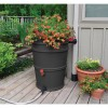 Rain barrel with flowers in it